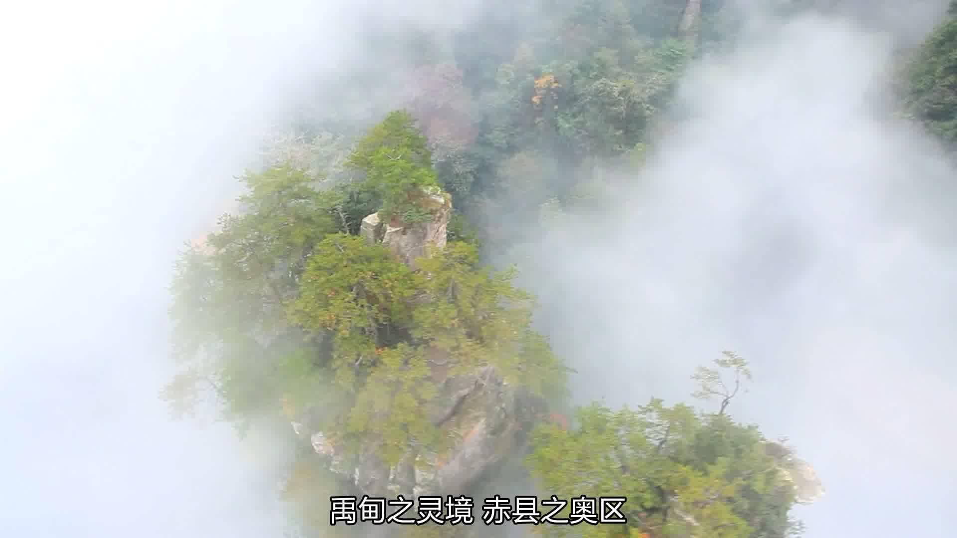 《为家乡推介》张家界市武陵源区委副书记