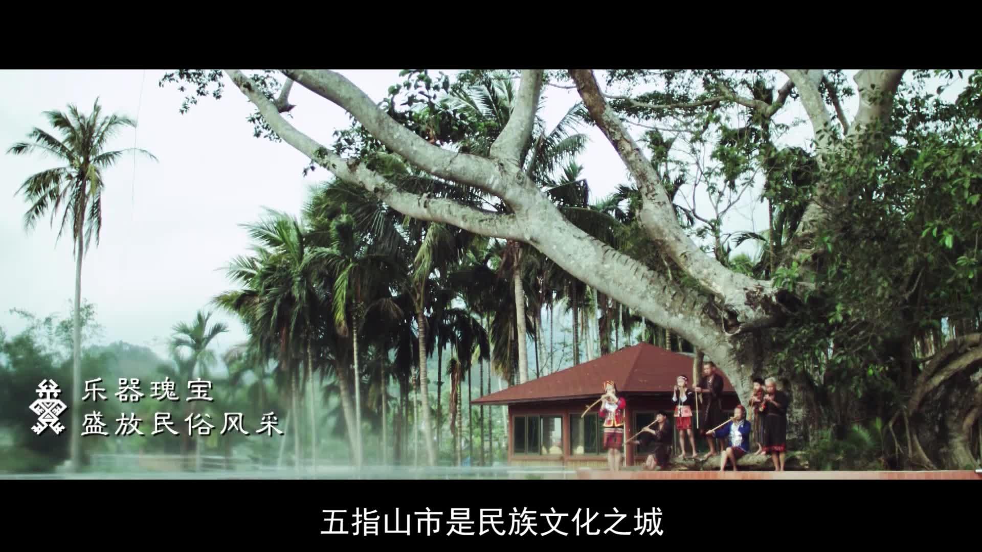 《为家乡推介》海南省五指山市长陈振聪