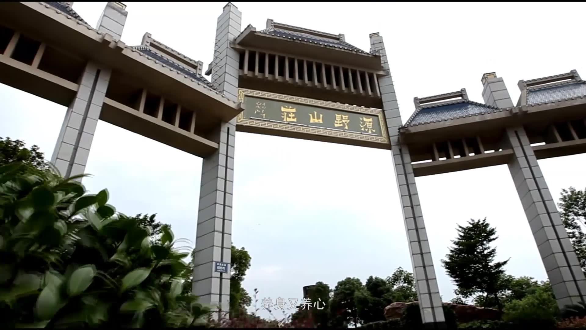 《中国推介》之《中国麻鸡之乡——崇仁》